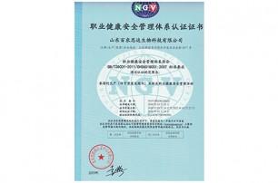我公司顺利通过环境管理体系认证